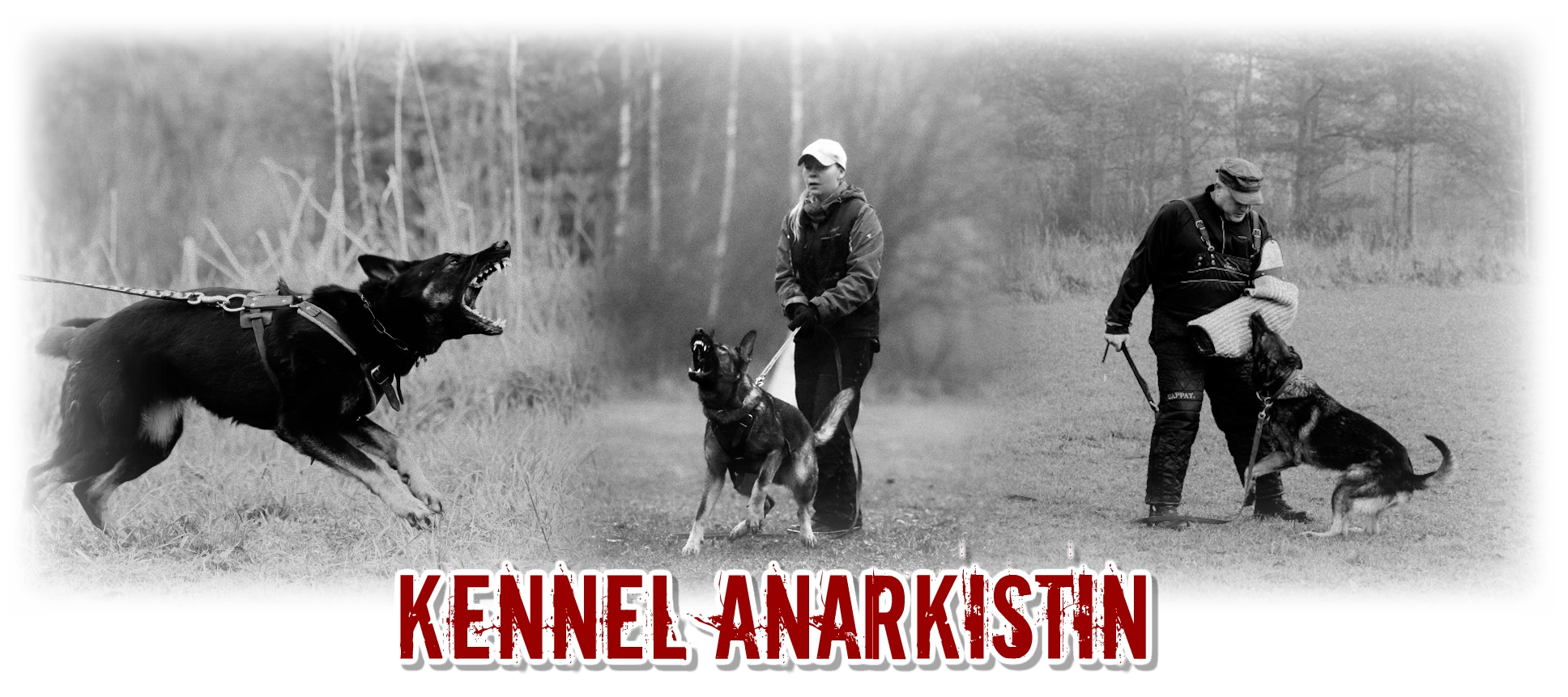 Kennel Anarkistin